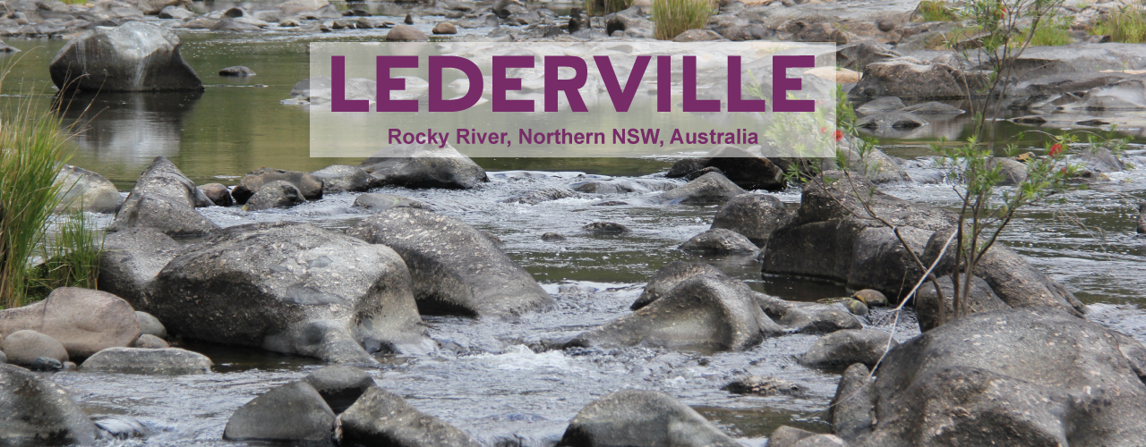 Buy Online Australian Certified Organic Garlic